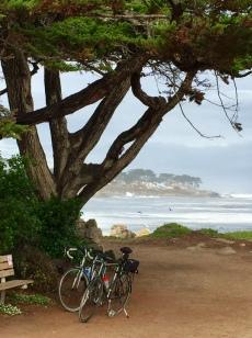 monterey-bike-ride