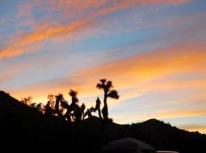 jt-sunset