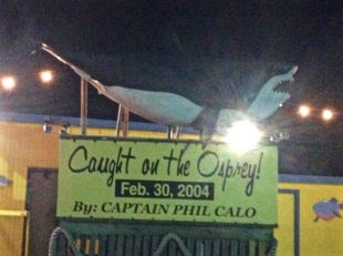 caught-on-osprey