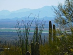 Tucson valley view