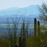 Tucson valley view